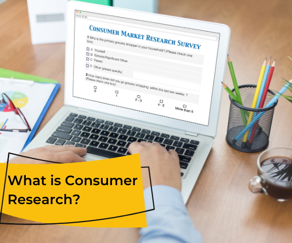 Online survey showing what is consumer research