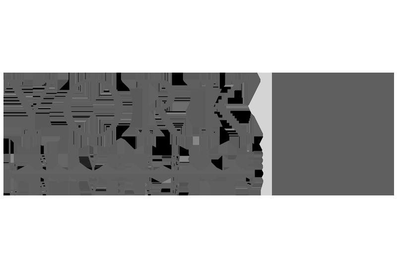 York University Logo.
